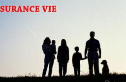 Comprendre l'assurance vie et ses différentes polices
